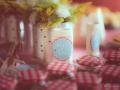 Casamento PicNic4